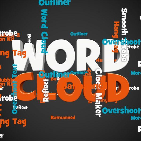 Word Cloud Logo w plugs